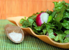 Green salad with radish and cucumbres Royalty Free Stock Photo