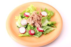 Green salad with radish and tuna fish Stock Photography