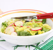 Green salad with red radish Stock Photography