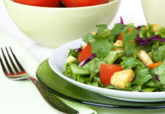 Green Salad With Red Tomatoes Royalty Free Stock Photography