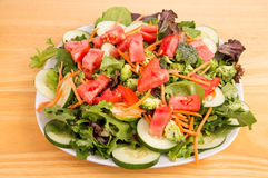 Green Salad with Red Tomatoes Stock Images