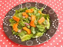 Green salad with salmon fish Stock Photos