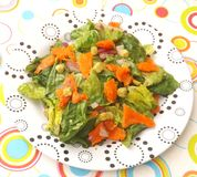 Green salad with salmon fish Royalty Free Stock Photos