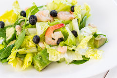Green Salad with Shrimps on Light White Background, Healthy Eating Concept, Paleo Diet Royalty Free Stock Photography