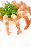 Green salad with shrimps Stock Photo