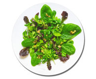 Green Salad with spinach,isolated Stock Photos