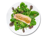 Green salad with spinach leaves and smoked trout Royalty Free Stock Image