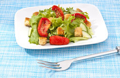 Green Salad with sun dried tomatoes Stock Photos