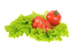 Green salad and tomato Royalty Free Stock Image