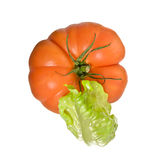 Green salad and tomato. Isolated on white background Royalty Free Stock Photos