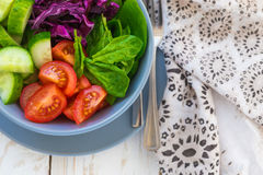 Green salad with  tomato, red cabbage, cucumber and spinach Royalty Free Stock Photography