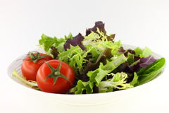 Green salad and tomatoes Stock Image