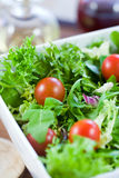 Green salad with tomatoes Stock Photography