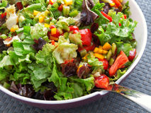 Green salad with tomatoes and peppers Stock Photography