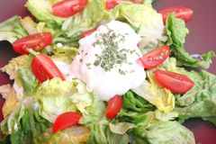 Green salad with tomatoes Stock Images