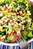 Green salad with tomatos and croutons Stock Images