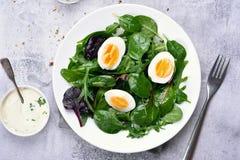 Green salad, top view Stock Photos
