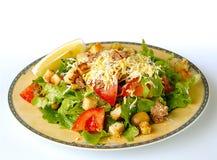 Green Salad With Tuna Stock Photography