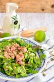 Green salad with tuna, lime and seeds. Green salad with tuna fish, lime and seeds on a plate Stock Photos
