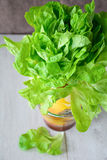 Green salad in vase Royalty Free Stock Images