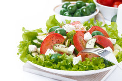 Green salad with vegetables and feta and ingredients, isolated Stock Photography