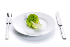 Green salad on white plate royalty free stock images