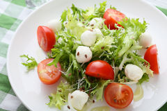 Green salad on white plate. Food close-up Royalty Free Stock Photos