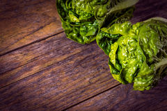 Green salad on a wooden table Royalty Free Stock Images