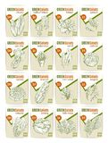 Vector sketch price cards for salads vetables. Green salads or vegetables price cards sketch design templates for farm market or grocery store. Vector set of Royalty Free Stock Image