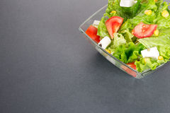 Green salat on gray or dark background Royalty Free Stock Images