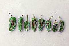 Green salt peppers stock photo