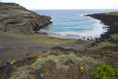 Green sand beach. Rocky cliffs and beach with green sand on Big Island Stock Photos