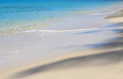 Green Sand Beach Beautiful background in summer.Seascape Seasonal nature Stock Photos