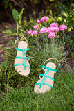 Green sandals lie on the grass, ladies comfortable shoes. A Stock Images