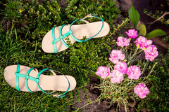 Green sandals lie on the grass, ladies comfortable shoes Stock Photo