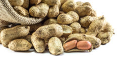 Peanuts in a Sack in White Background with Selective Focus Stock Photo