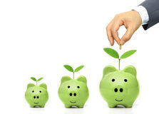 Green saving Royalty Free Stock Images