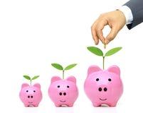 Green saving Stock Photo