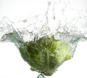 Green savoy cabbage. In mineral water Stock Images