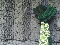 Green scarf Stock Photos