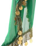 Green Scarf Decorated With Coins Stock Image