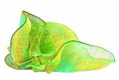Green scarf Stock Images