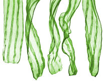 Green scarf isolated on a white Royalty Free Stock Photos