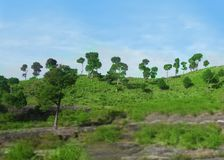 Green scenerio of a hill. This is in azad kashmir stock photo