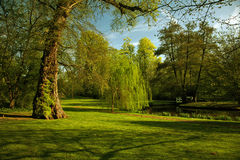 Green scenery Royalty Free Stock Photos