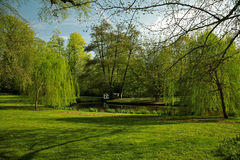 Green scenery Royalty Free Stock Images