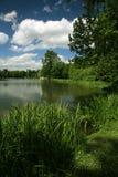 Green scenery Stock Photos
