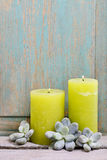 Green scented candles and succulent plants Royalty Free Stock Images