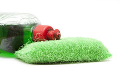 Green scourer Stock Images