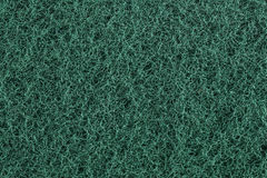 Green scourer. Macro of green scourer for background use Stock Photos